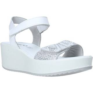 Sandále IgI CO  5178199