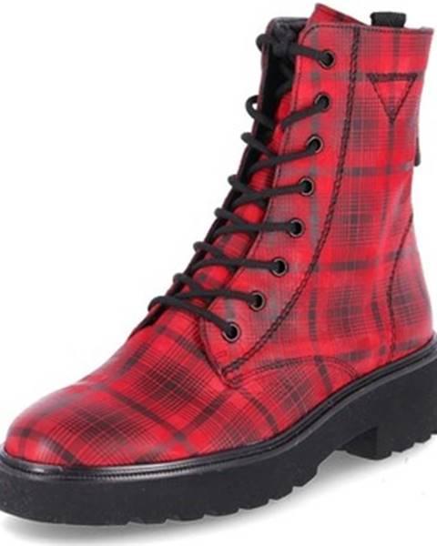 Viacfarebné topánky Paul Green