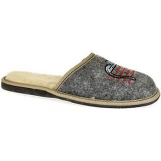 Papuče  Dámske sivé papuče TOMCAT