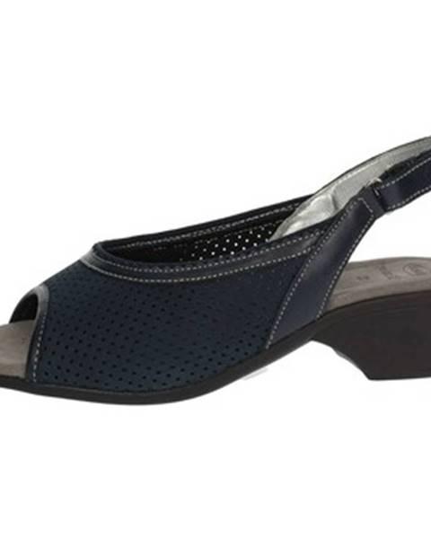 Modré topánky Scholl